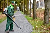 image of leaf-blower  - Landscaper cleaning the runway in park by petrol leaf blower - JPG