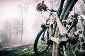 Mountain Bike And Helmet In Autumn Woods. Mtb Dirty Bicycle And Helmet Resting On Tree In Forest. Ad poster