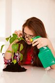 Attractive Woman Botanist Spraying A Seedling poster