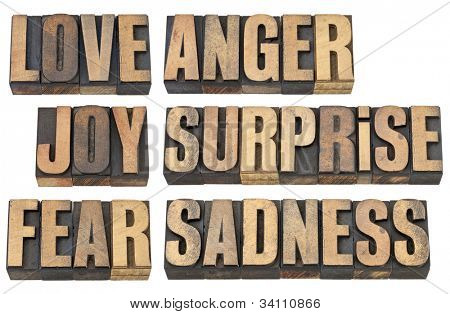 six basic emotions - love, fear, joy, anger, surprise and sadness - a collage of isolated words in vintage letterpress wood type