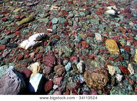 Colorful rocks under the water at Glacier National Park