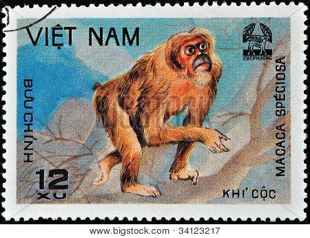 vietnamesische Stempel