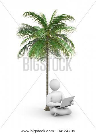 Person arbeiten oder entspannen Sie am Laptop unter einer Palme. Bild enthalten Beschneidungspfad