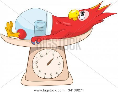 Cartoon Character Funny Parrot Isolated on White Background. Vector EPS 10.