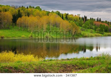 Multicolored Wood And Reflection Lake