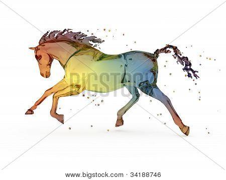 Rainbow water running horse over white