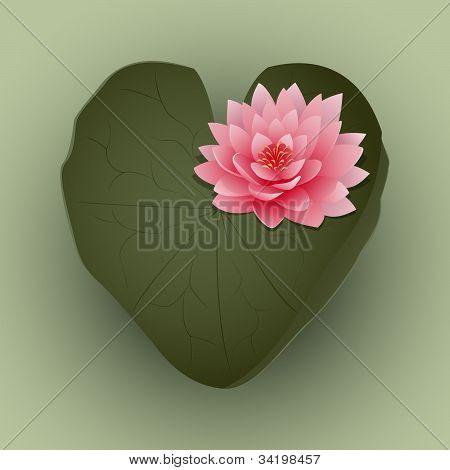 LilyPad Love