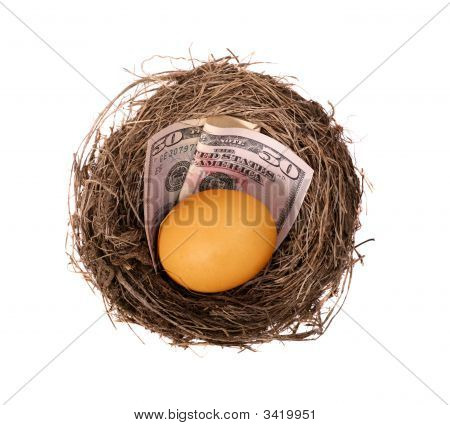 Nest Egg Money