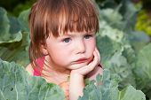 stock photo of cute little girl  - Sad small girl sitting in the cabbages - JPG