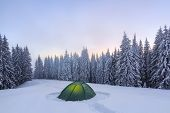 Majestic Winter Scenery. Fantastic Sunrise. On The Lawn Covered With Snow The Nice Trees Are Standin poster