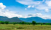 Rice Field Land In Summer. Landscape Of Green Field, Mountain With Blue Sky And White Clouds. Nature poster