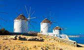 Famous Mykonos Town Windmills, Mykonos Island, Cyclades, Greece poster
