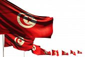 Nice Celebration Flag 3d Illustration  - Tunisia Isolated Flags Placed Diagonal, Photo With Soft Foc poster