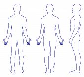 stock photo of male body anatomy  - Full length profile - JPG