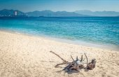 Scenic view of Nha Trang beach at sunny day. Beautiful tropical landscape. Snag on the foreground.  poster