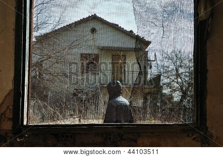Man In Garden Window Net