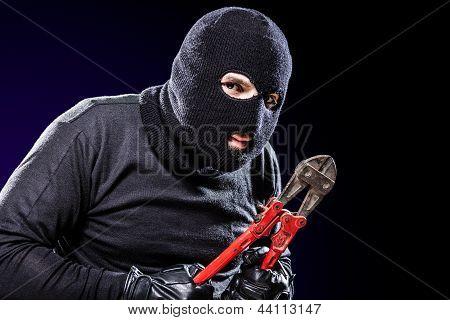 Retrato de housebreaker