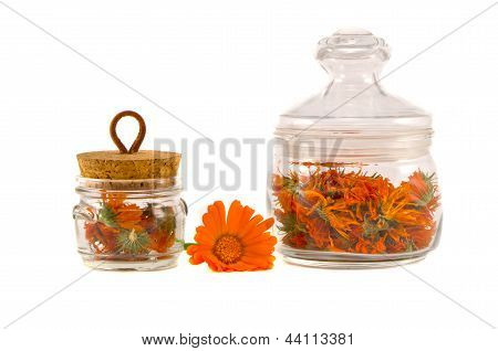 Dry Medical Herbs Calendula In Glass Jars Isolated