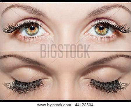 Eye And False Eyelashes