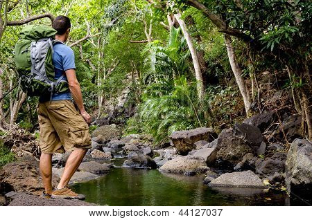 A Hiker Next to a Tropical River