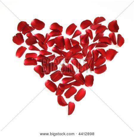 Heart Made Of Rose Petals