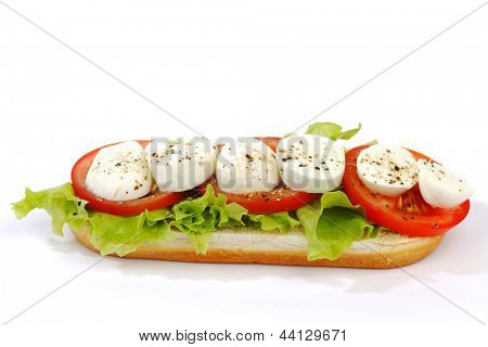 Sandwich with mozzarella tomato and salad