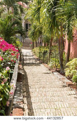 Famous 99 Steps Charlotte Amalie