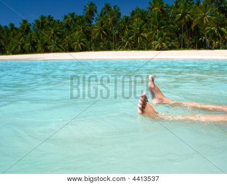 Resting In Crystalline Clear Waters In Maragogi Brazil