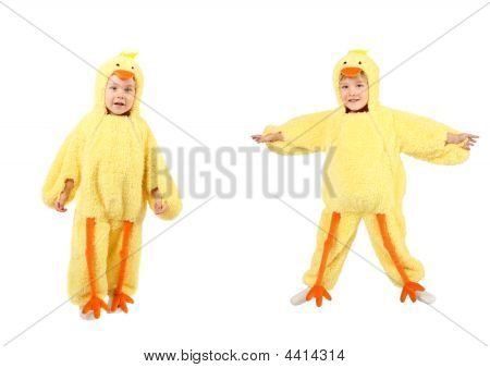 Little Boy Dressed Up In A Chicken Costume