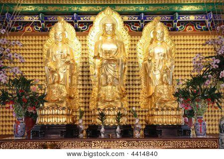 Standing Buddha Images.