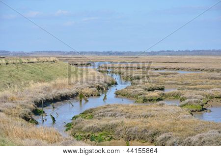 Essex coastal waters