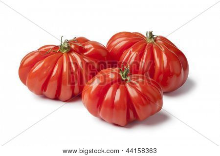 Organic Rebellion tomatoes on white background