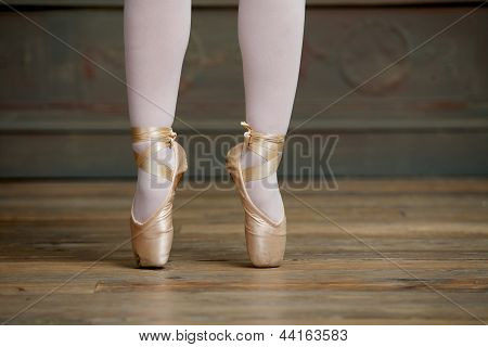 Ballerina Standing On Tiptoes
