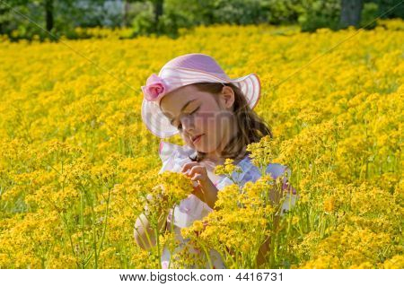 Little Girl Picking Flowers