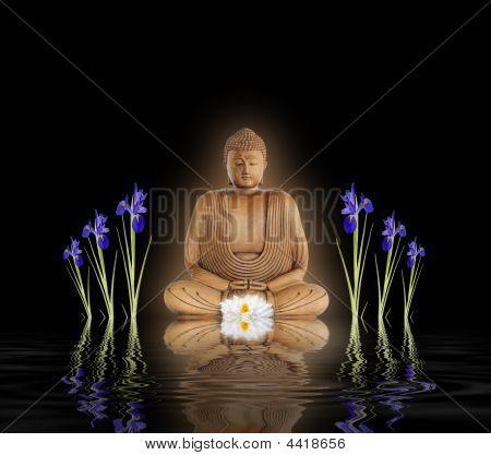 Buddha In Zen Garden