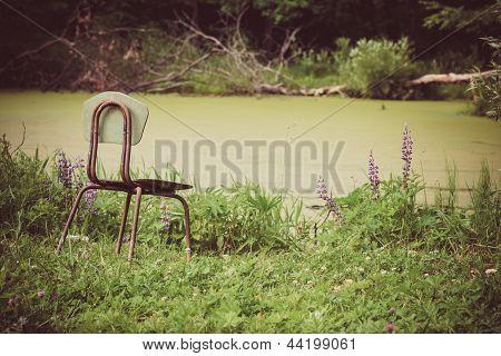 Landscape of single chair beside lake garden