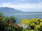 picture of montre  - View of lake Geneva from the Embankment in Montreux - JPG