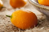 stock photo of kumquat  - Fresh Organic Raw Kumquats Citrus Fruit against a background - JPG