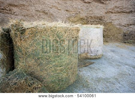 Haylage and silage