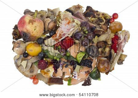 Rotten Food Waste Isolated Concept