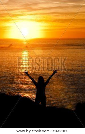 Sunworshipper