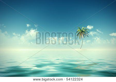 Coconut Island Sunshine
