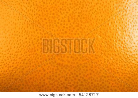 Ripe Orange Background