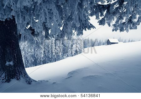 Winter landscape with snow in a mountain valley. Cabin in the woods. Carpathians, Ukraine, Europe