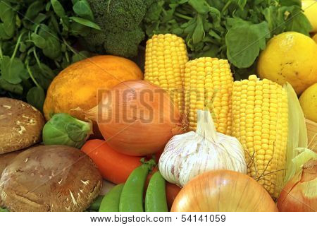 Fresh Vegetables Healthy Grown Organic in Style