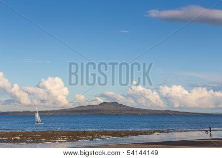Catamaran Sailing In Front Of Rangitoto Island