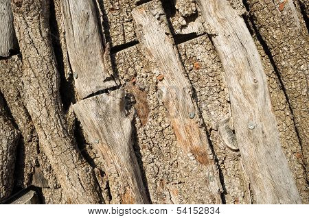 Piled Logs