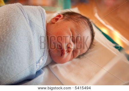 Swaddled New Born Baby