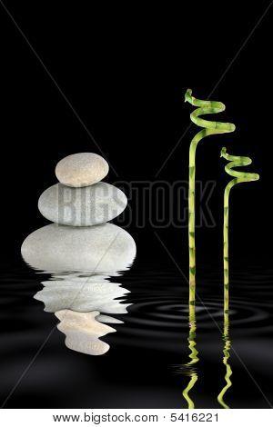Elemental Zen Garden