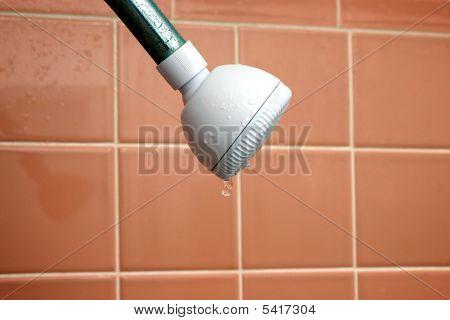 Dripping Showerhead